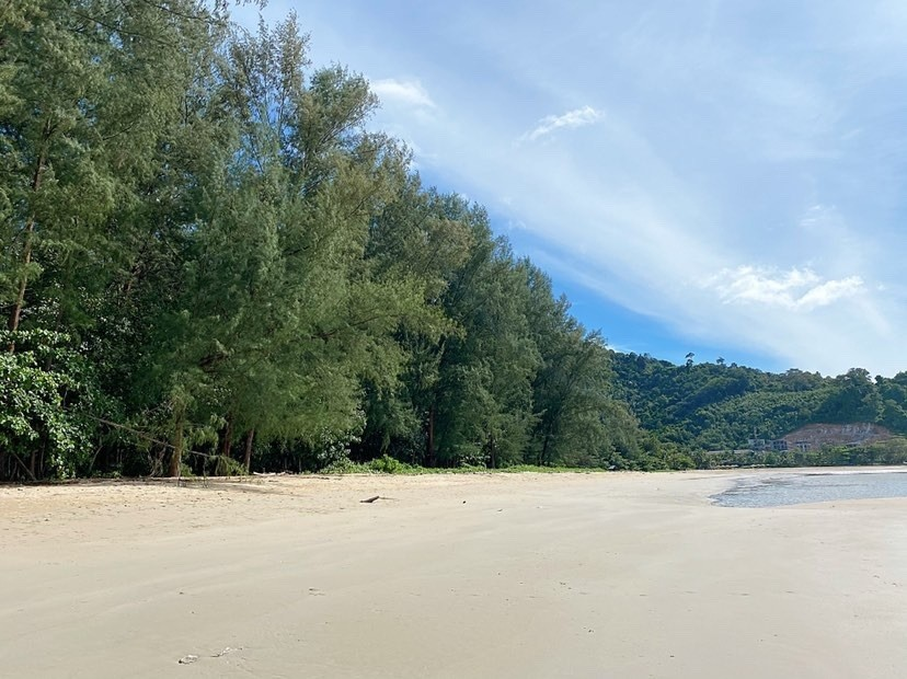 หาดในยาง,ที่เที่ยวธรรมชาติ
